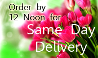 Same day delivery - order by 12 noon